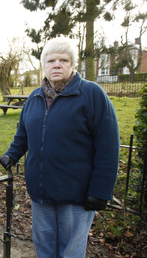 Public Gardens could be protected from development after campaign